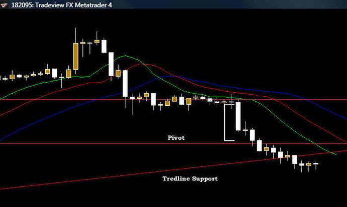 Alligator forex trading system