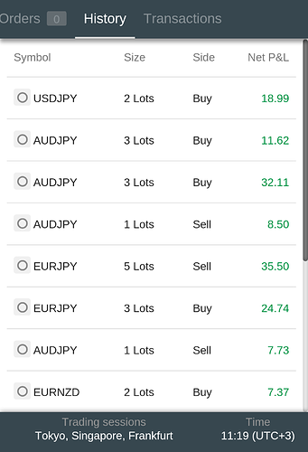 Different lot sizes in forex