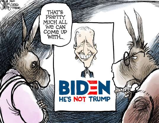 cartoon - Biden - 25